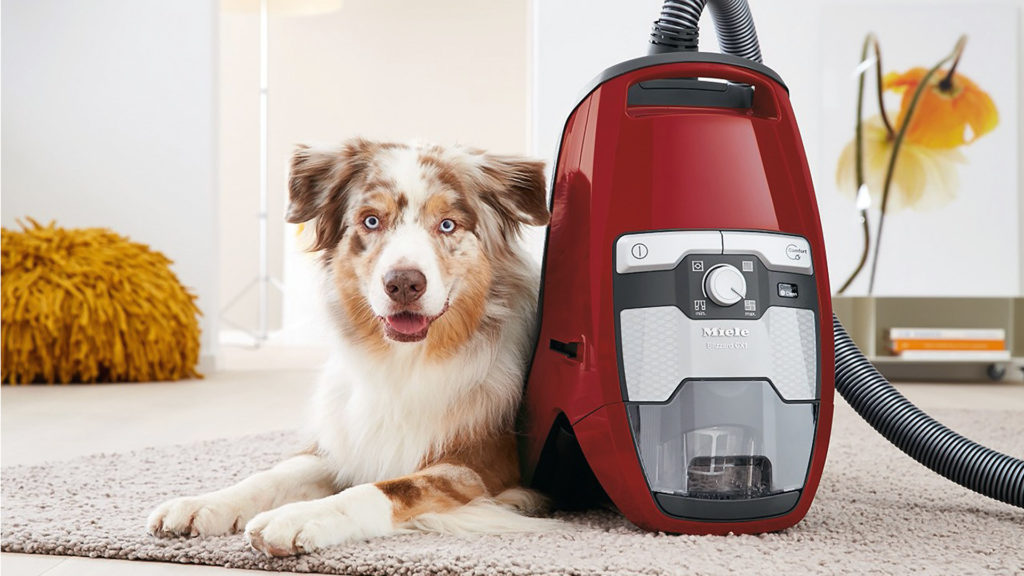 What Are Pet Vacuum Cleaners And How Are They Different From Other Vacuum Cleaners?